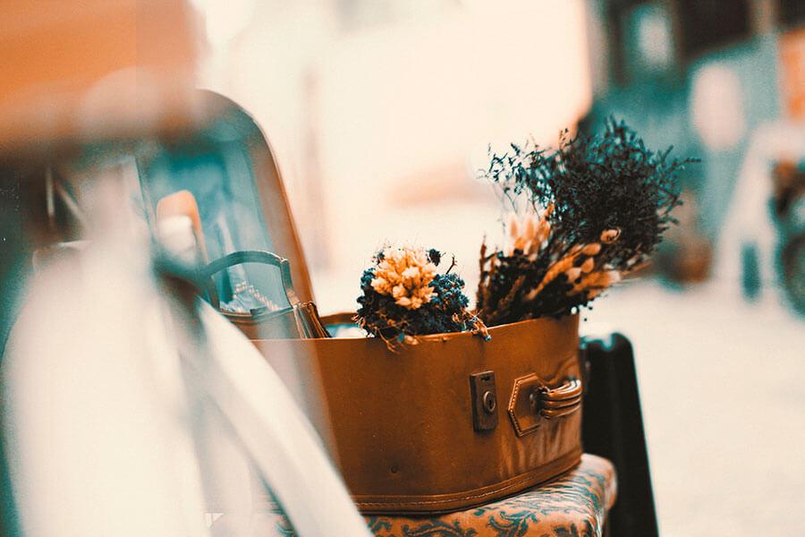 Flores en una maleta