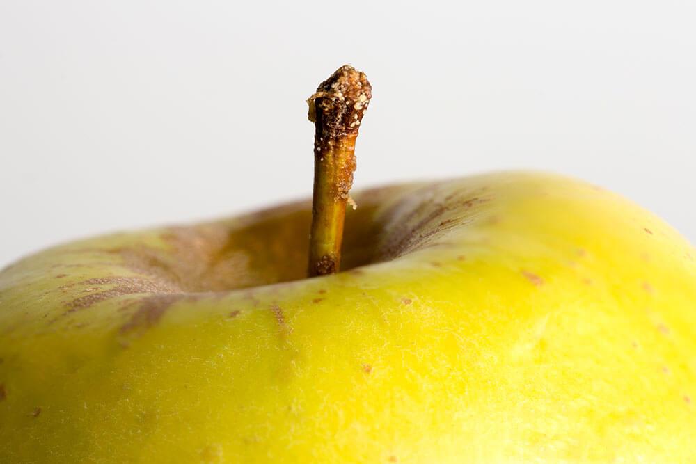 Fotografía macro de una manzana