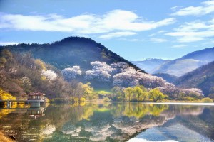 Reflejo en el agua con el paisaje.