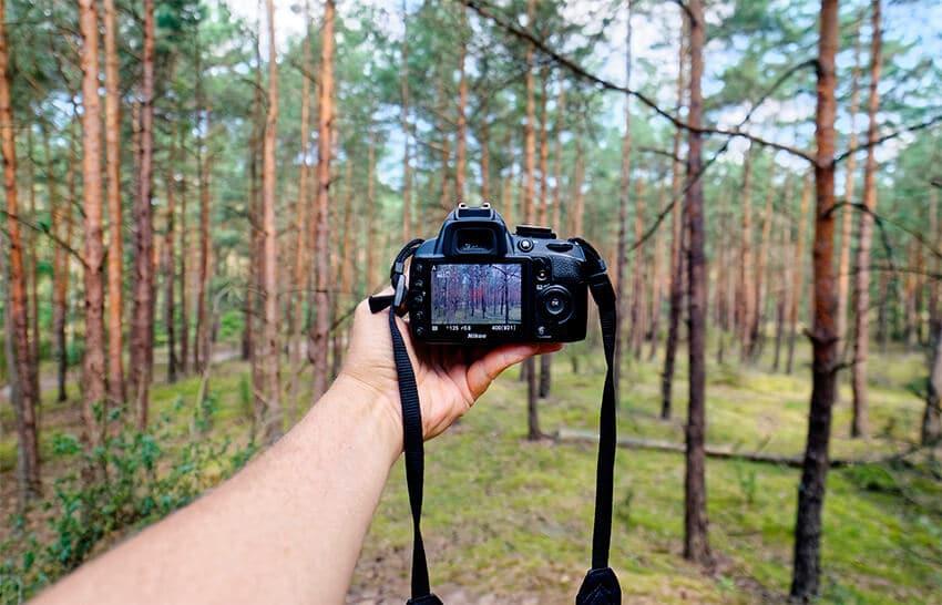 Consejos comprar cámara réflex