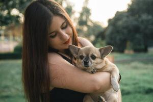 Fotos con perros