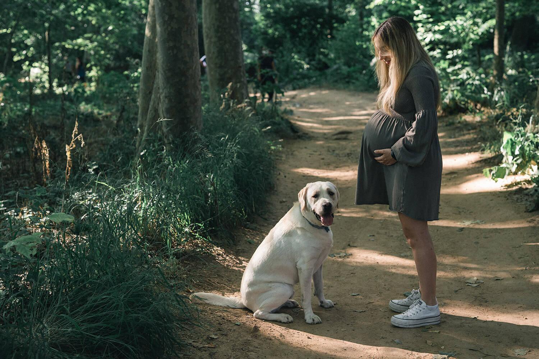 Fotos embarazada con perros